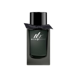 Burberry Mr.Burberry Edt 100 ML Erkek Parfüm Outlet